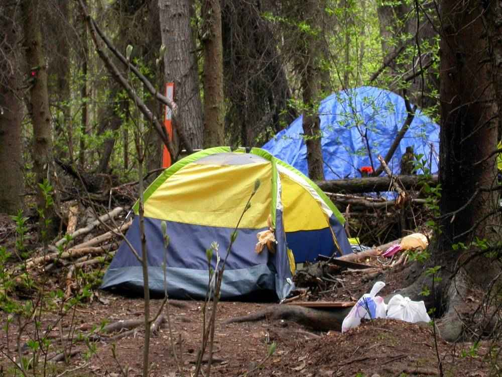 A yellow and gray camping tent set up in the woods.